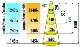 Lampes en appliques  LED HALEMEIER LiteLine Basic LED 230 V