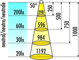 Lampes LED en appliques HALEMEIER InnoLine Plus confectionnées 12 V sur mesure