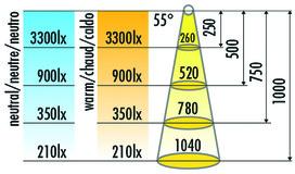 Lampes encastrables LED HALEMEIER SuperSpot 12 V