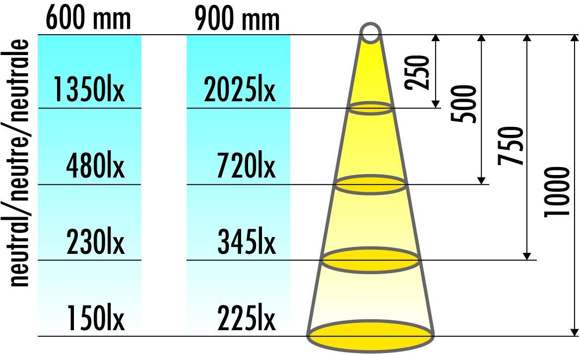 Lampes fluorescentes en applique L&S 230 V