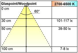 Lampade LED incassate/esterne L&S Emotion Woodpoint 12 V
